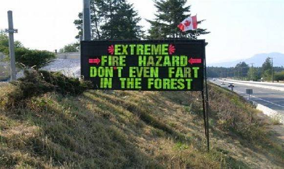 Fart forest.jpg