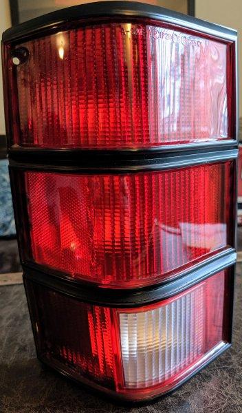 black tail lamp.jpg