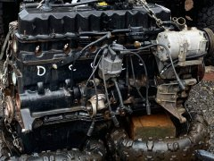 25ED0DCF-614A-4E9E-92B5-962CD3EEDA05.jpeg